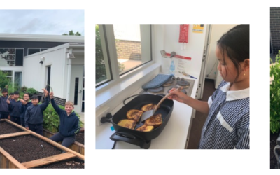 Year 5/6 Cooking