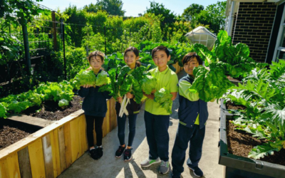 Athol Road Primary School taking teaching from farm to classroom
